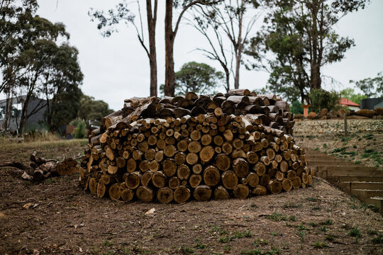 Neatly stacked circular woodpile ready for winter