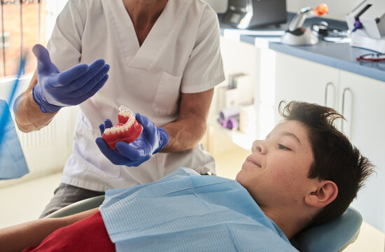 Dentist showing plastic jaw to a patient.