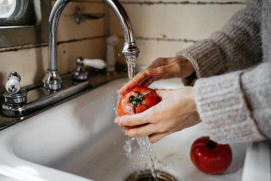 Anonymous woman washing tomatoes