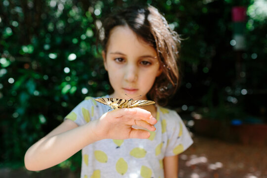 Kid and butterfly