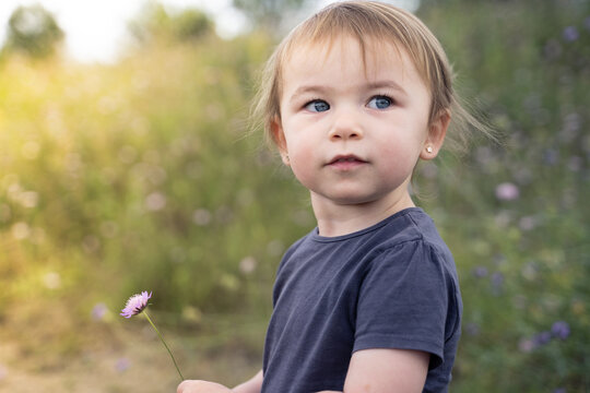 Side view of serious attentive little toddler examining wild flowers while standing on path in grassy field in summer day