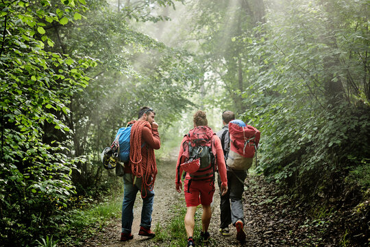 Rear view of mountaineers with backpack and climbing equipment walking on path