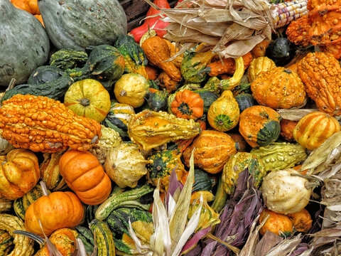 Top view of harvest of various vegetables placed on stall in local grocery market in New York