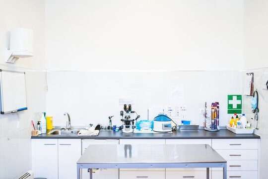Clean table located near cupboards with medical equipment inside office of contemporary veterinary clinic