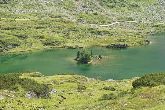 Insel mit Bäumen in den Giglachseen in der Steiermark