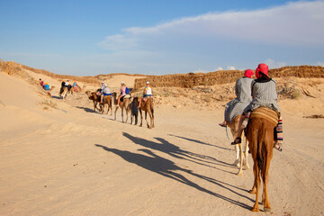 Group of tourists over dromedary camel walking in the sands