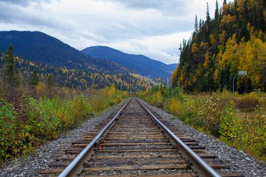 Autumn Pine Pass Railway Tracks