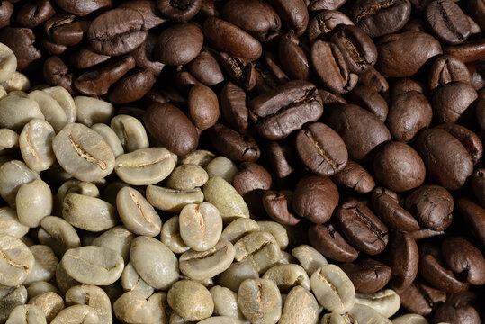 Kaffeebohnen Kaffee Bohnen roh und geröstet  Rohkaffee Röstkaffee