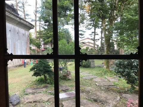 Garden from Traditional Window