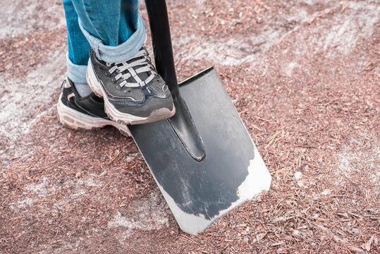 Womens feet in sneakers stick bayonet shovel into the ground.