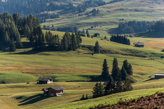 View of the largest high-altitude alpine meadow in Alpe di Siusi or Seiser Alm, Val Gardena, Dolomites, South Tyrol, Italy