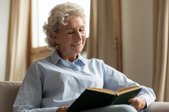 Book lover. Happy aged woman sitting in comfy living room occupied in reading new paper novel of modern author purchased in bookstore, ordered online or received by mail from book club subscription