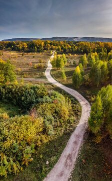 Vertical aerial view over colorful green and orange autumn forest vith gravel road in countryside in Samara region, Russia