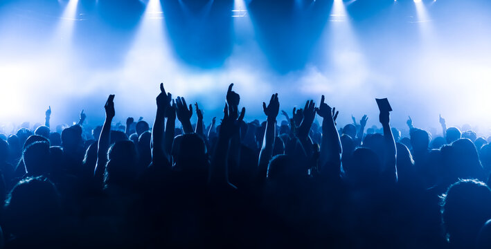 crowd of people dancing in front of the stage at rock concert