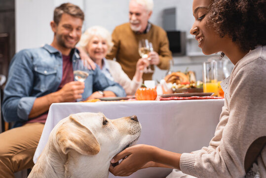 selective focus of african american girl stroking golden retriever while family celebrating thanksgiving day