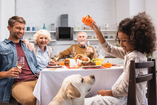 selective focus of african american girl holding decorative pumpkin near golden retriever during thanksgiving dinner with family