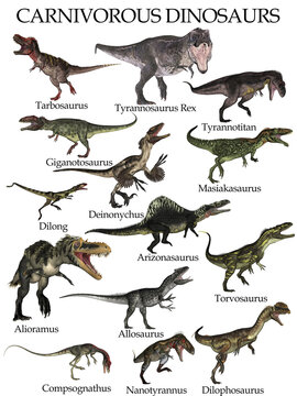 Carnivorous dinosaurs set isolated in white background - 3D render