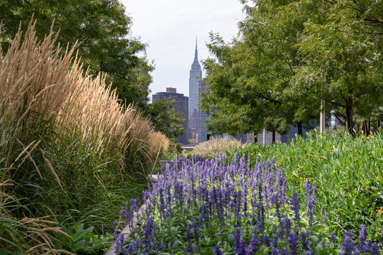 Midtown Manhattan Skyline View seen from Gantry Plaza State Park in Long Island City Queens New York with Plants and Flowers during Summer