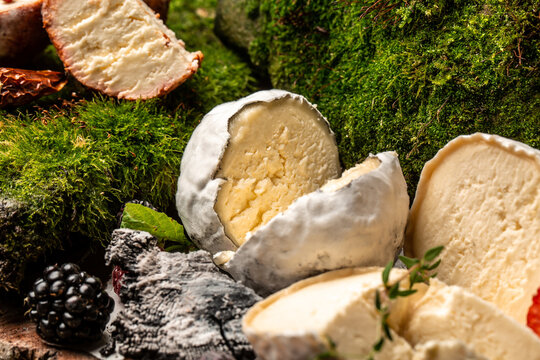 Hard Cheese, Soft Cheese, Blue Cheese, goat cheeses crottin de chavignol, French goat cheese covered with ash, home made cheese farmer, The concept of natural eco food