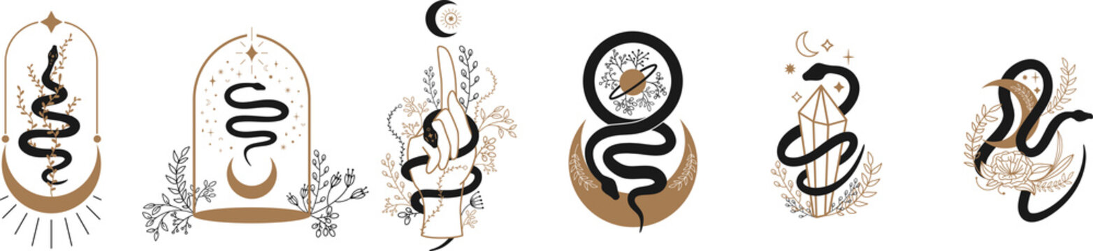 Floral magic Snake. Snake and wildflowers. Halloween and boho Floral design. Botanical elements. Black silhouette snake for logo, tattoo. floral frames, sun, moon, star, crystals