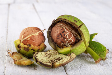 Raw walnuts in shell on a wooden table. The fruits of a large deciduous tree.