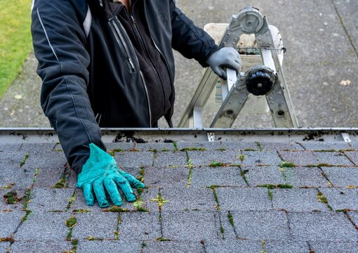 Man inspecting and cleaning dirty moss-covered roof