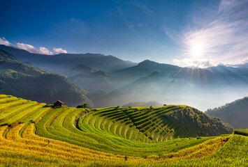 Sunset over Terraced rice field with lens flares, Mu Cang Chai, Yen Bai, Vietnam