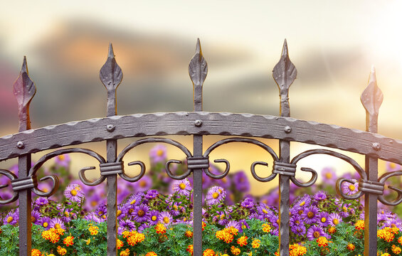 wrought iron fence and flowers at sunset sky