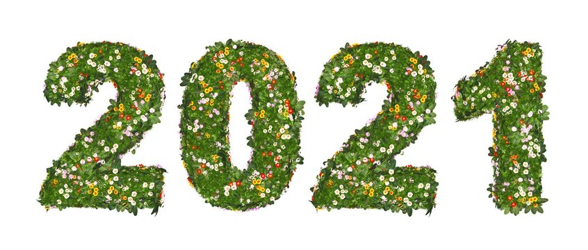2021 - Blumenwiese