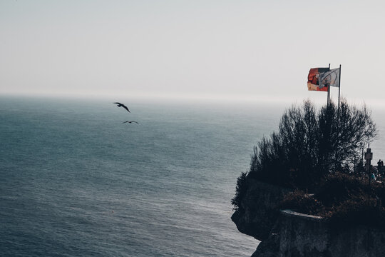 birds flying, Portugal flag and the sea