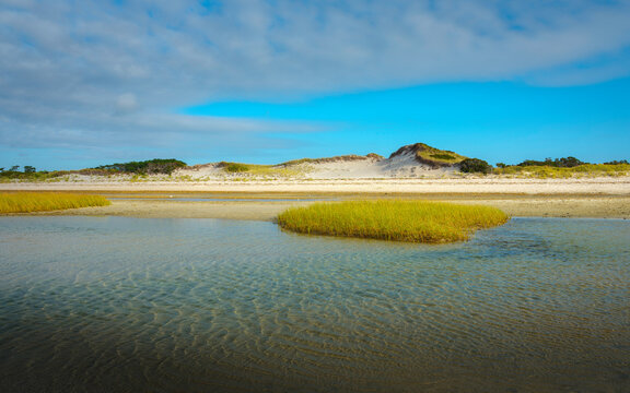 Cloudy seascape with sand dunes and seagrass at low tide at the Mayflower Beach on Cape Cod