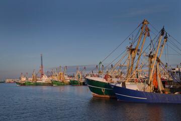 Fishing boats at Port of Harlingen Friesland. Harbour. Waddenzee.. Noordzee. Netherlands.