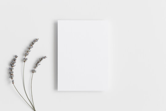White invitation card mockup with a lavender. 5x7 ratio, similar to A6, A5.