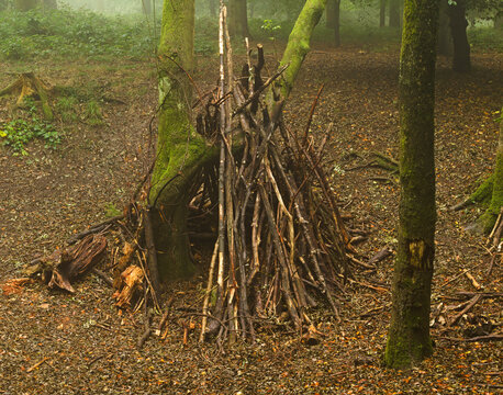 wooden Bivouac shelter in the woods