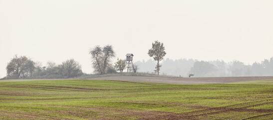 Rural landscape with wooden hunting blind on a field in an autumnal misty morning, color toning applied.