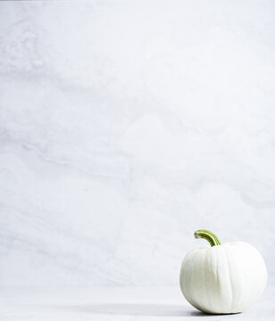 Artisanal pumpkins and gourds on a neutral background