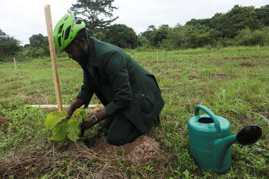 """The Ivorian environmental activist Andy Costa also known as the cycling ambassador in Africa, plants a tree during the """"One day five million trees"""" reforestation day in Yamoussoukro"""