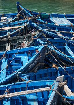 Blue boats bow to bow, Essaouira, Morocco