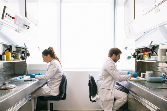 Side view of man and woman in lab coats sitting at tables and examining samples while working in research laboratory together.