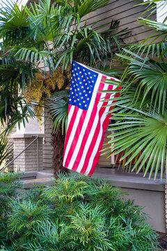 Tropical American Flag