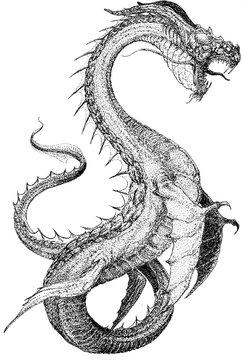 black dragon tattoo sea serpent
