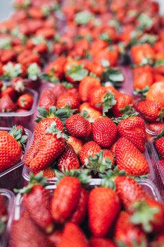 Strawberries in vessels