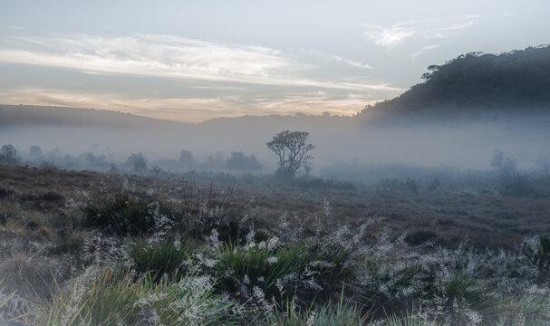Sri Lanka Horton-Plains-Nationalpark