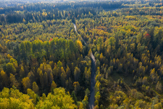 Aerial view of the road in the autumn forest in Karelia