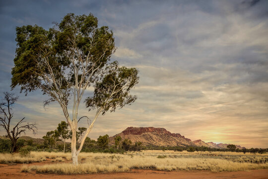 Western McDonnell  Sunrise - Central Australia