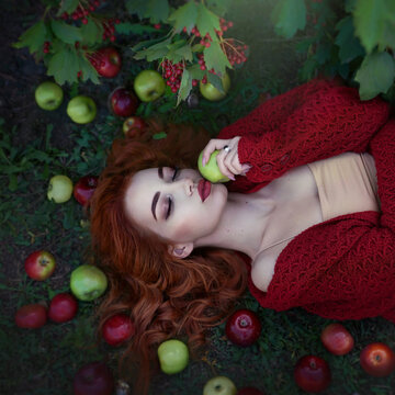 Young attractive beautiful red-haired woman with apples and Rowan berries in a fairy light top view. Art processing. Autumn colors.