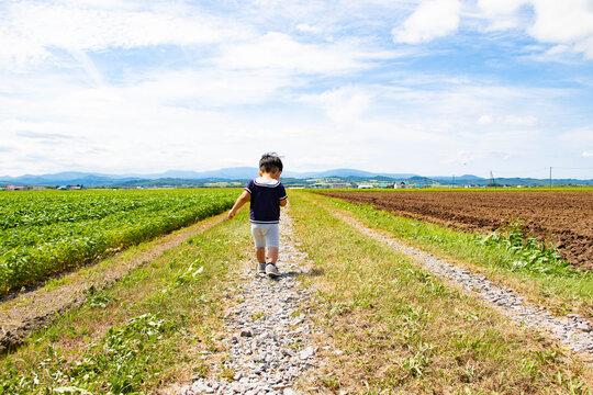 道を歩く幼児