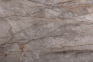 Canvas Prints Marble Silver Roots - natural polished marble stone, photo of slab texture for perfect interior, background or other design project.