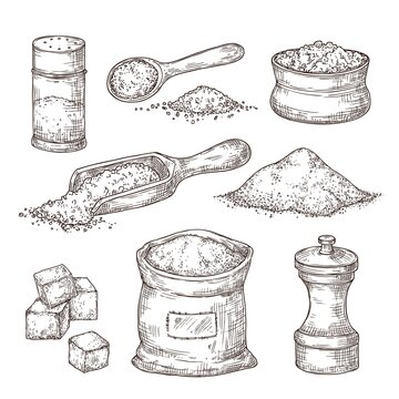 Salt sketch. Hand draw spice, vintage bowl spoon with sea salt powder. Food ingredients to cook, isolated pepper shaker vector illustration. Salty and pepper sketch, shaker container