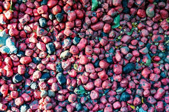 Macro closeup of lot of whole pink clay pebbles, leca flatlay